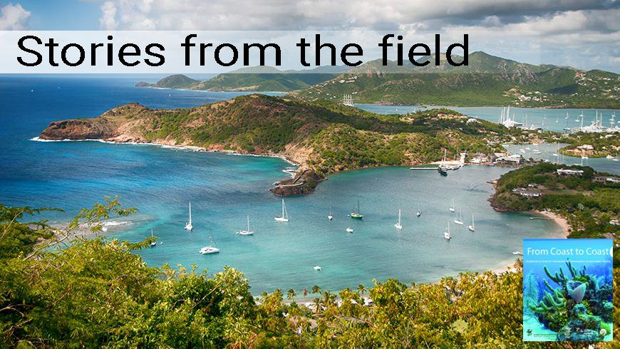 Falmouth Bay, View from Shirley Heights, Antigua