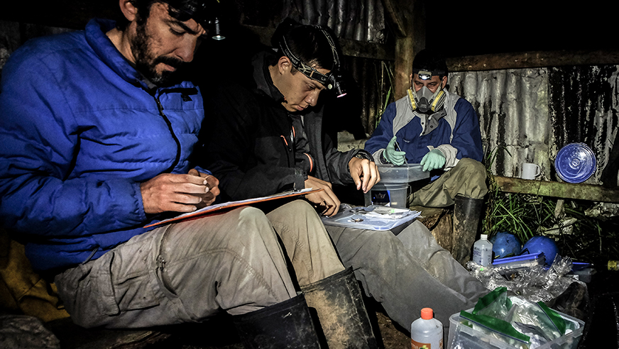 Scientists in the field cataloging the day's findings