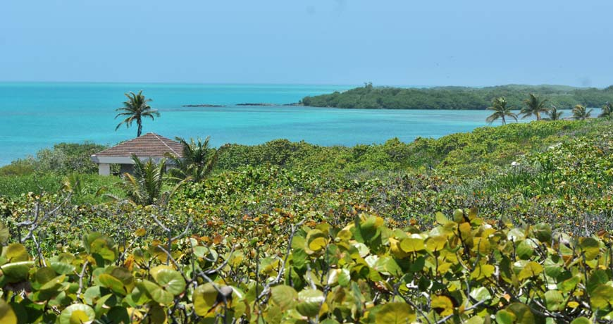 A view of Isla Contoy National Park, Quintana Roo.