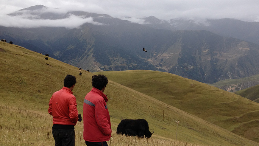 Chinese villagers looking out over a backdrop of mountains with buffalo grazing and an eagle flying nearby.