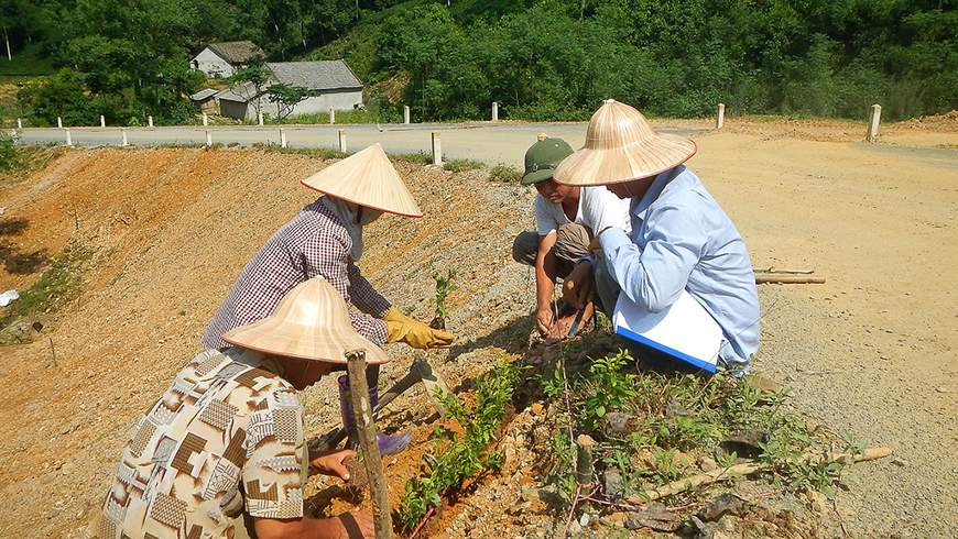 Vietnamese locals working on roadside as part of infrastructure improvement project