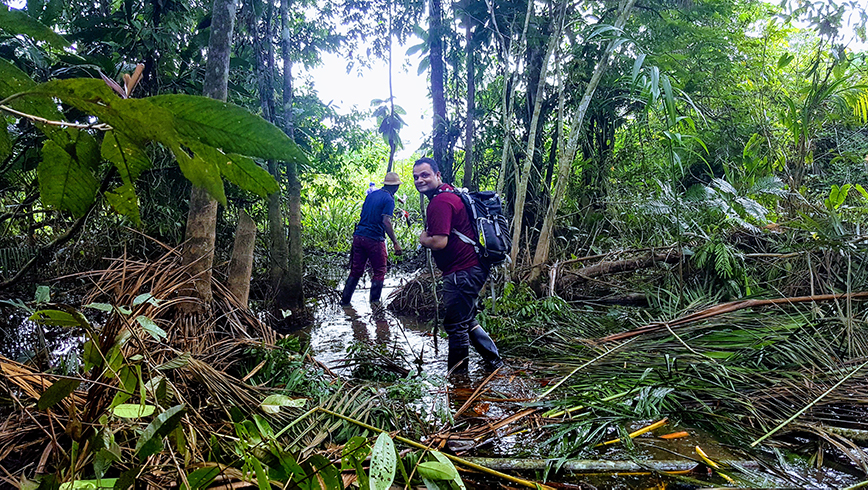 A field visit inside an intact forest in Colombia's Choco bioregion