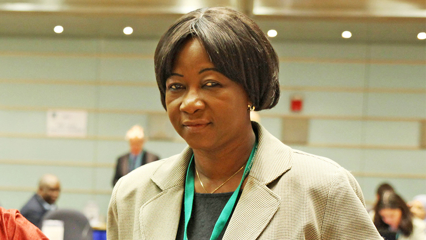 Alimata B. Kone at the 44th GEF Council meeting in June 2013
