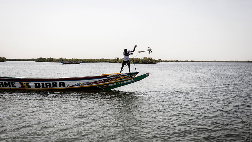 A man anchors his boat along the mangroves of the Saloum delta in Senegal