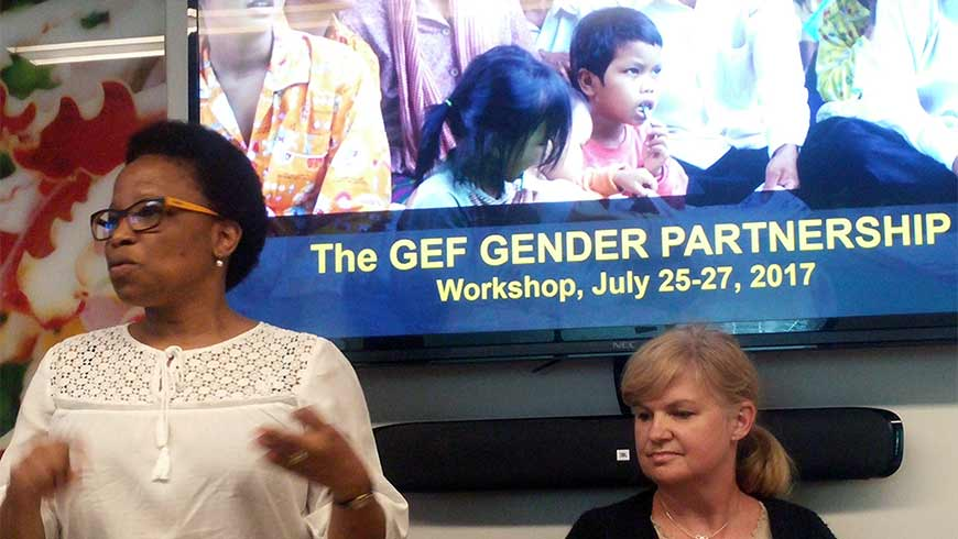 GEF Gender Partnership