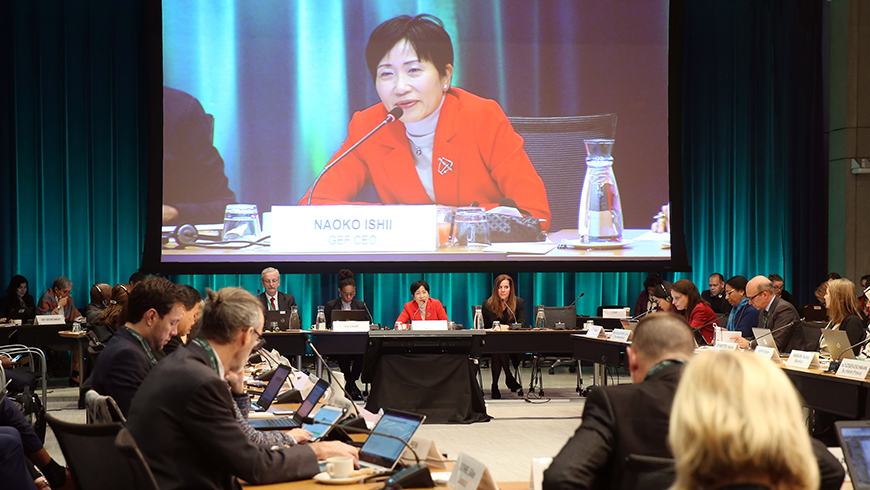 GEF CEO and Chairperson Naoko Ishii addresses the 57th Council