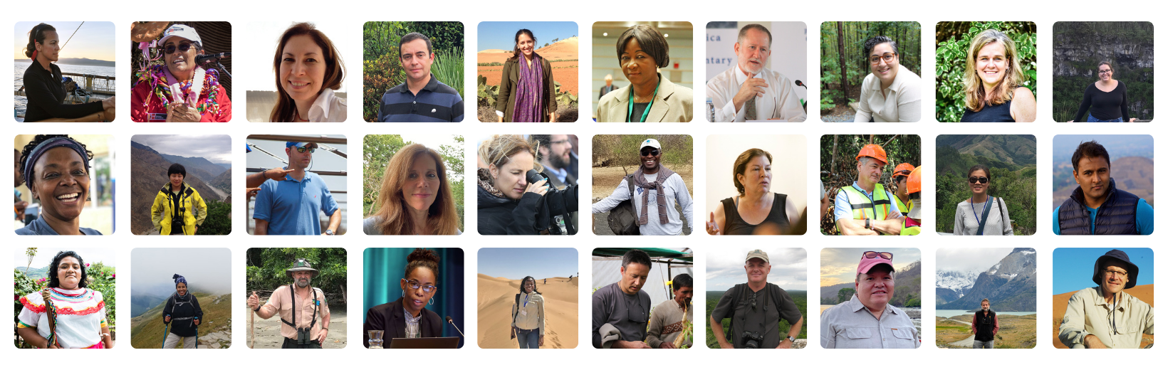 Mosaic image of people interviewed for GEF Q&As