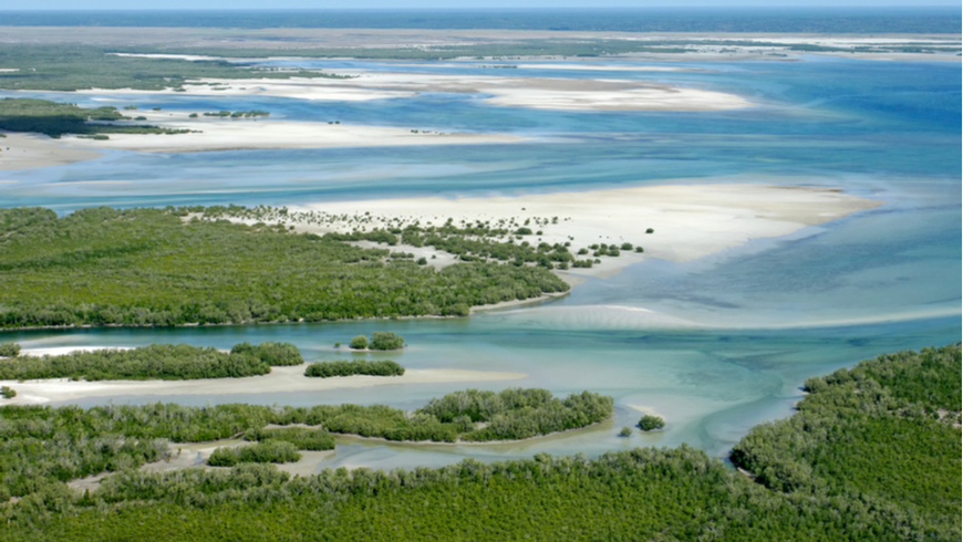 The World Bank, with support from theGEF, has been among the largest financiers of biodiversity conservation in Africa. Biodiversity work, amounting to about $360 million, is included in around 50 projects currently being implemented in the Africa region. Photo: EcoPrint/Shutterstock.