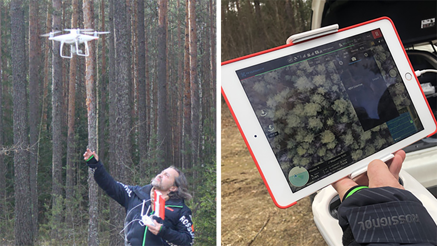 Drone being used to map Belarusian forest