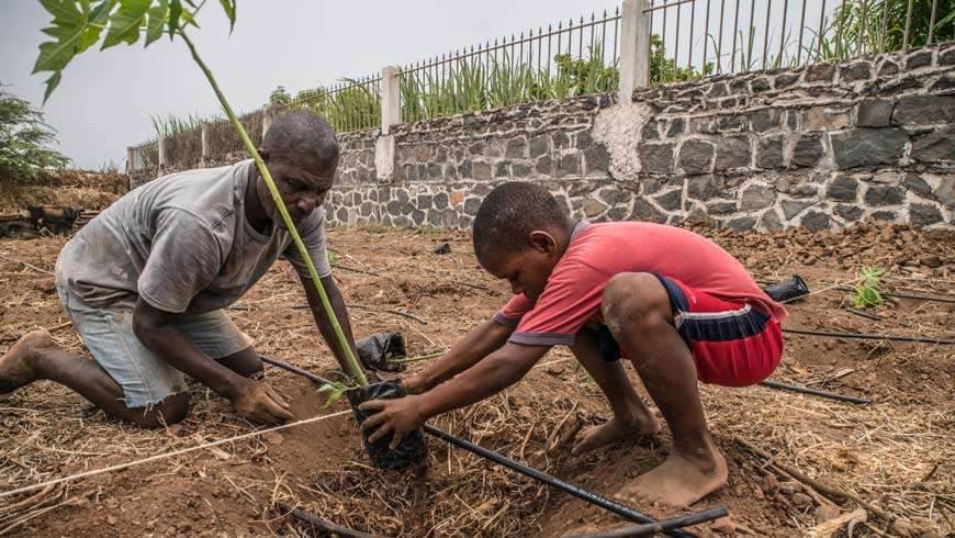 10 year old Cleber Borges and his dad working in their field in Colonato, using drip irrigation distributed by the project.