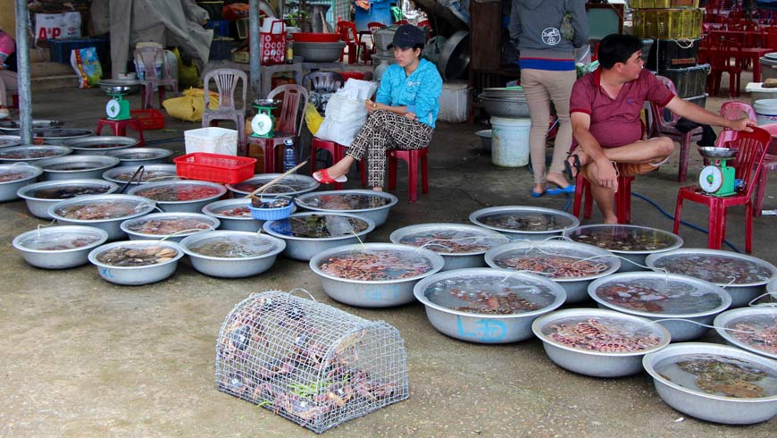 Only labeled crabs can be sold in the markets of Cham Islands. Regulating the harvest has helped the crab population to recover.