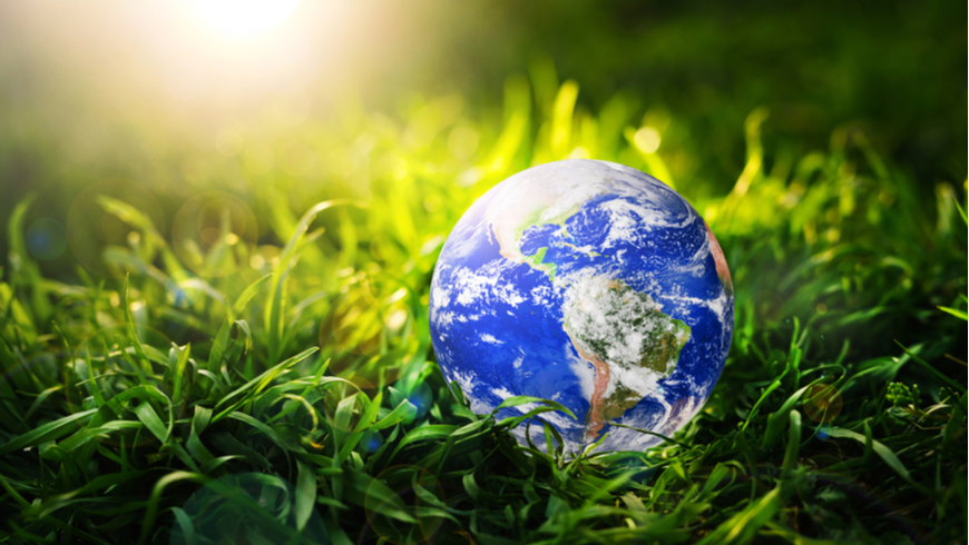 concept image of Earth in grass