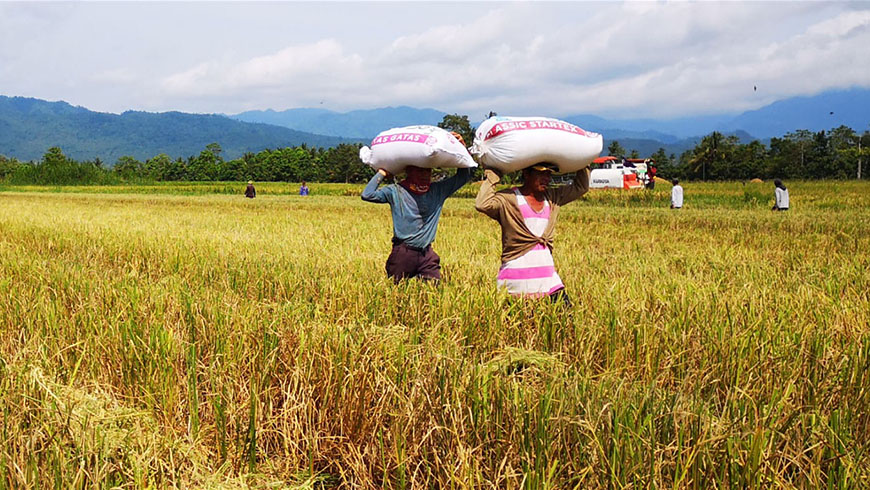 People carrying crops on their heads