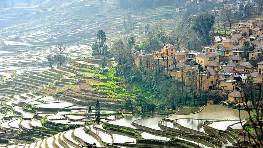 China Terraces