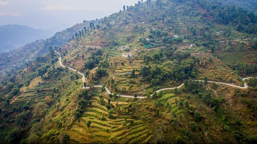 Bhutan terraced fields