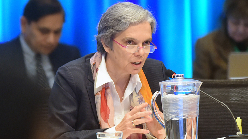 Francoise Clottes speaking at a GEF Council meeting