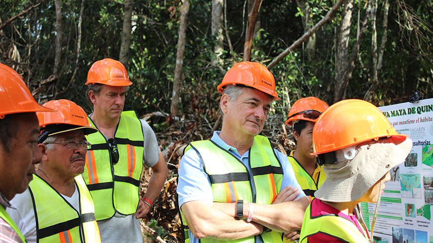 GEF Director of Programs Gustavo Fonseca (center) visiting a sustainable forest management project in Mexico