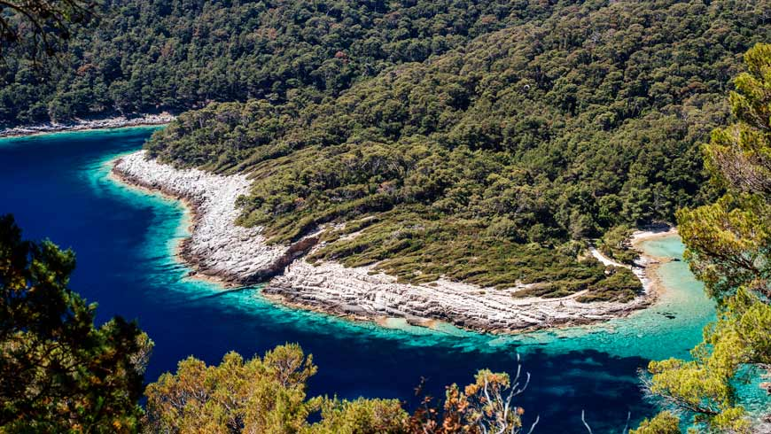 Shoreline of Mljet National Park