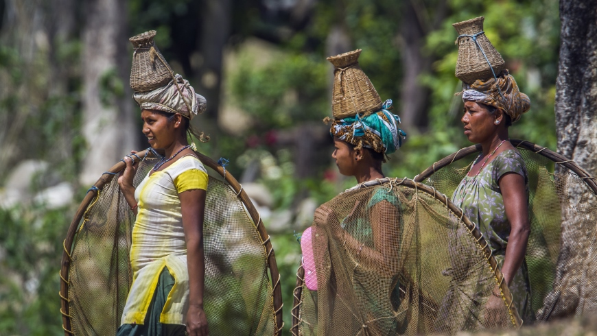 Ethnic Tharu women on their way to go fishing in Bardia, Nepal.