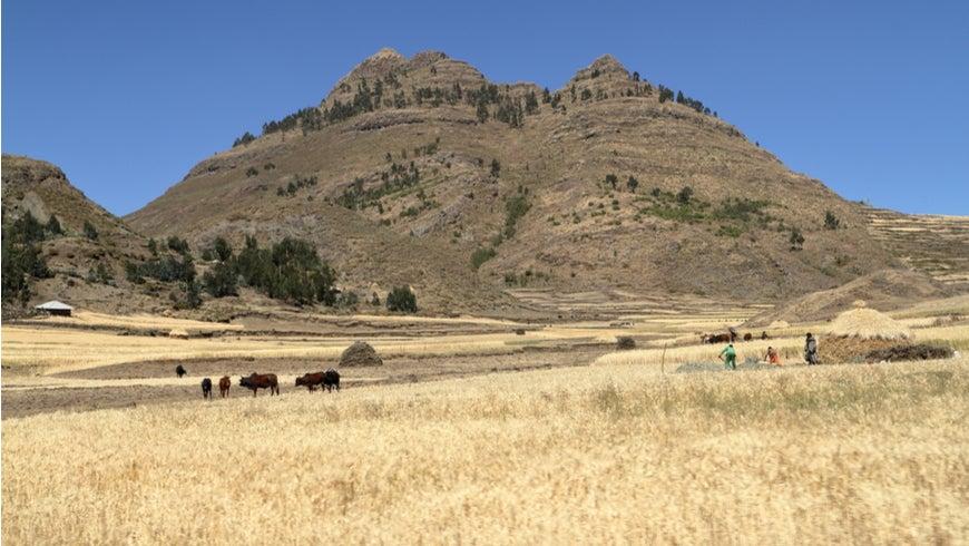 Farmers working in a desert landscape in Ethiopia.