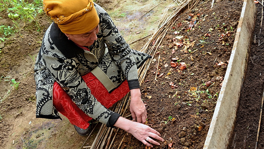 A woman in Turkmenistan showing her compost pile