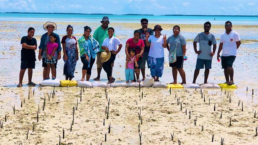People standing behind newly-planted mangroves in Kiribati