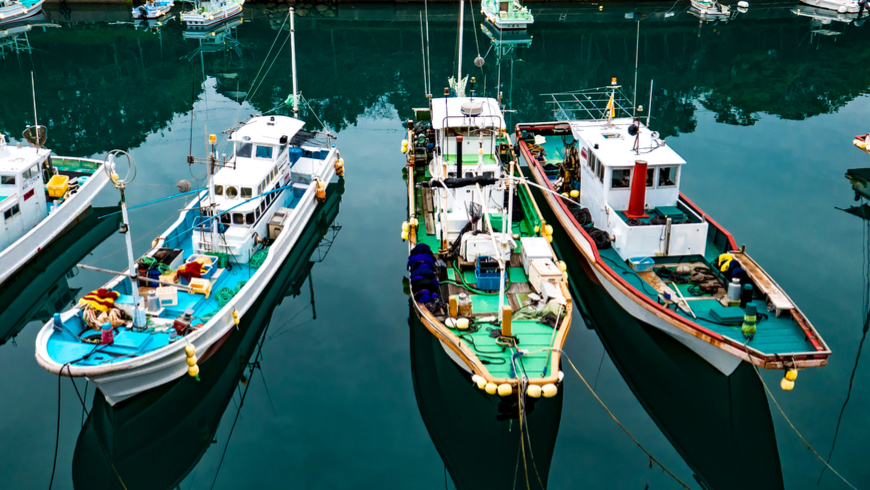 Partnership model: some Japanese fishing communities benefited from responsible resourcing. Photo: Marco Scotto/Shutterstock.
