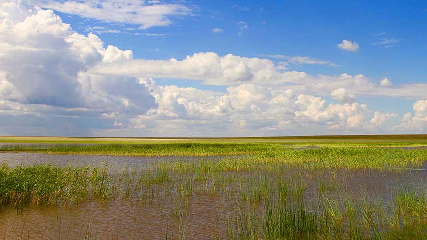 Kazakhstan Wetlands