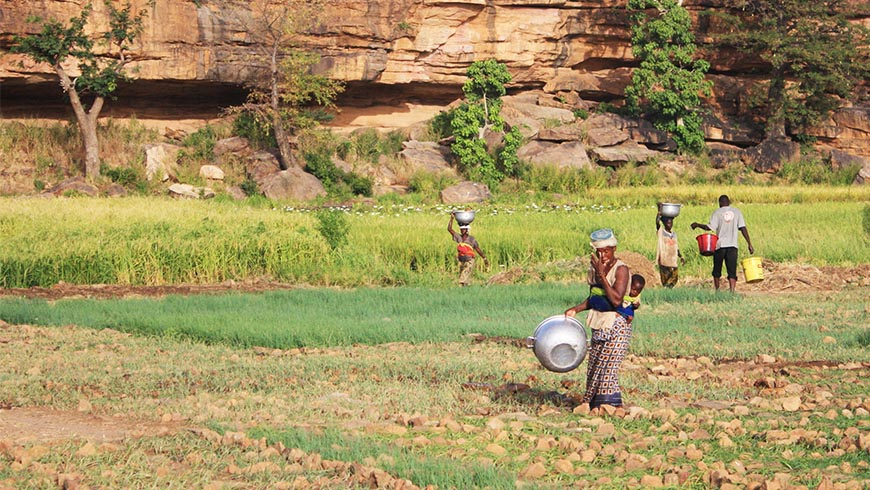 A group of people working in a field in Mali, one of the most vulnerable countries to the impacts of climate change