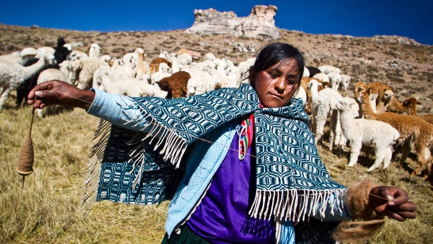 Since 1998, the SGP in Peru has supported more than 300 projects in 23 of the 24 regions of the country. The SGP, funded by the Global Environment Facility (GEF) and implemented by UNDP since 1992, has been supporting projects around the world that conserve the global environment while enhancing people's well-being and livelihoods.