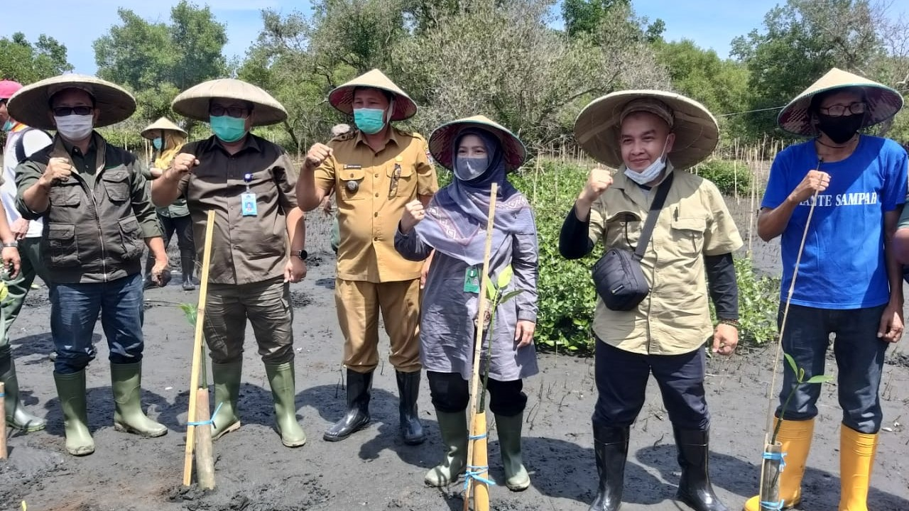 Labor-intensive mangrove planting in Southeast Minhasa, North Sulawesi, Indonesia as part of the Indonesian National Economic Recovery Program from the COVID-19 pandemic