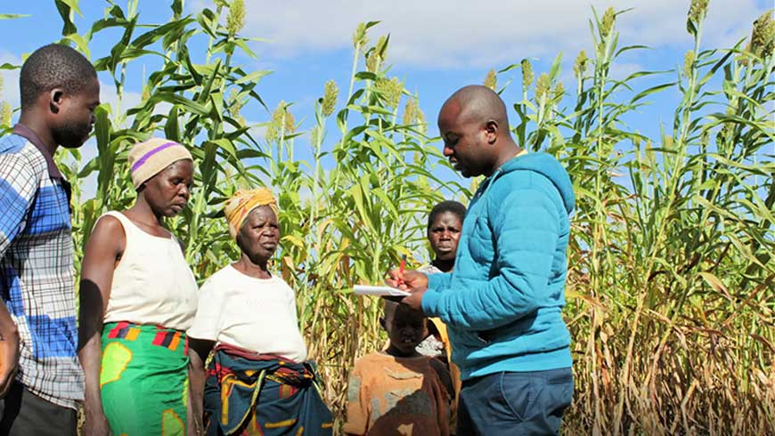 Evans Simengolwa (right), Field Officer for Conservation Farming Unit Zambia, talks to farmers.​