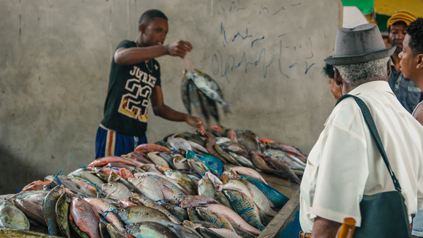 Seychelles Fish Market