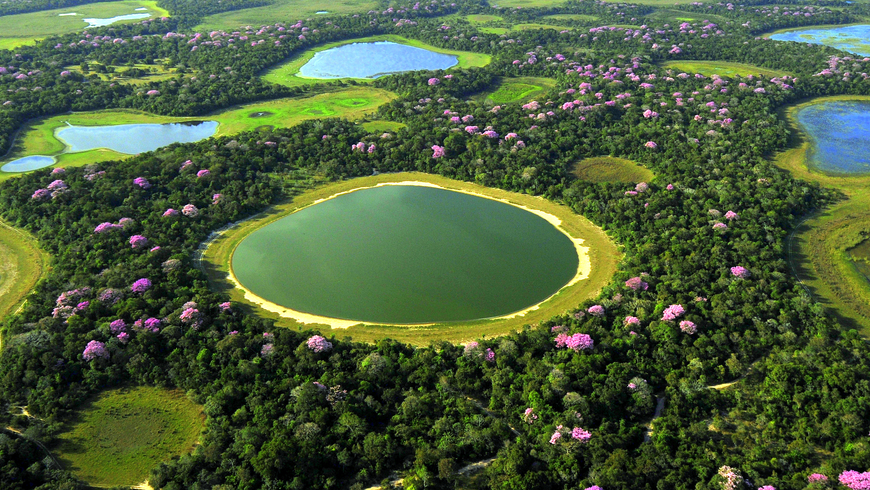Aerial view of Pantanal in Brazil
