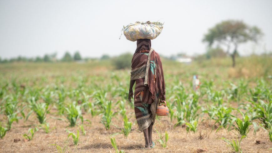 Woman carrying items through the Sahel Desert in Chad