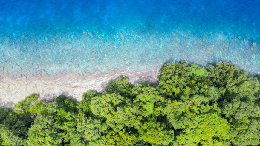 Aerial view of reef and rainforest in Papua New Guinea