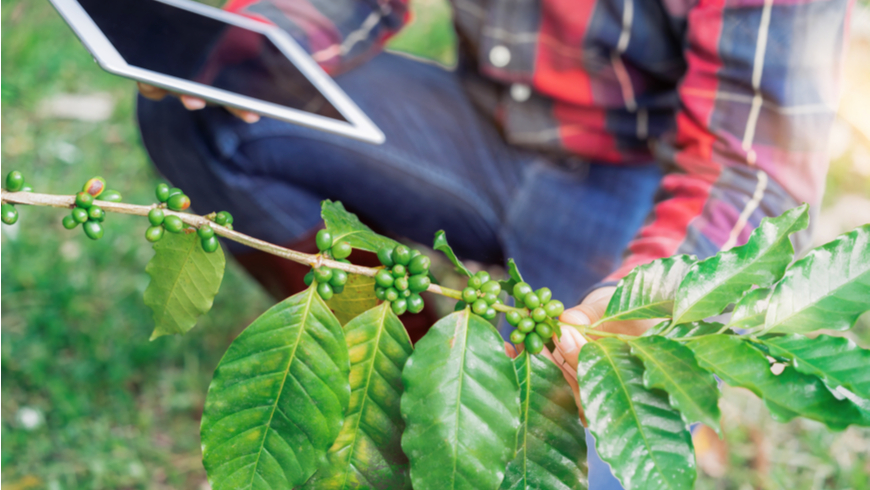 Winners of GEF Challenge Program for Adaptation Innovation announced