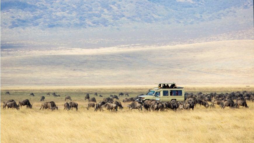Safari tourists in Ngorongoro, Tanzania
