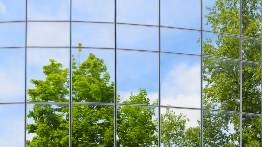 Trees reflected in building glass