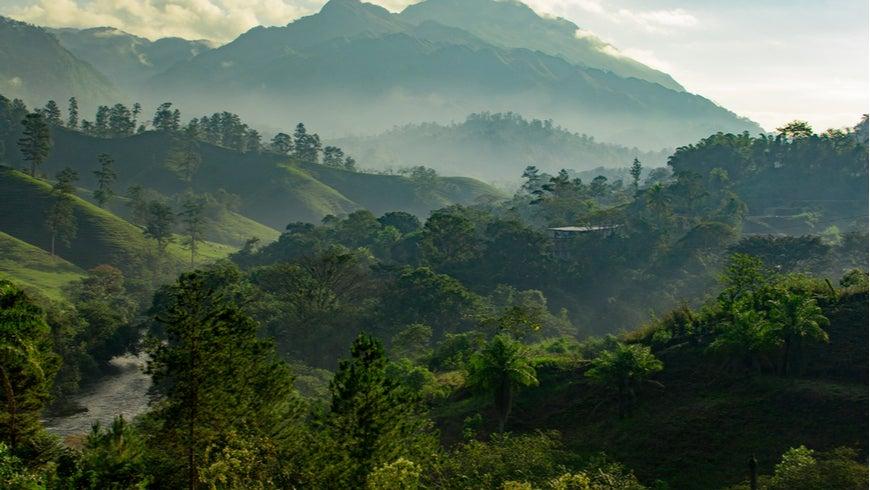 Sunrise over the Guatemalan jungle