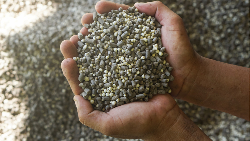 Handful of nitrogen fertilizer and manure