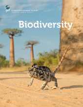 GEF Biodiversity bifold publication cover image