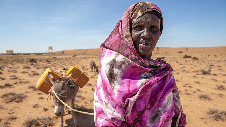 Somali woman pulling donkey with water