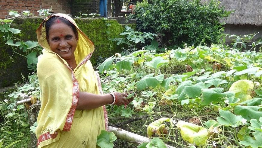 Woman tending garden in India
