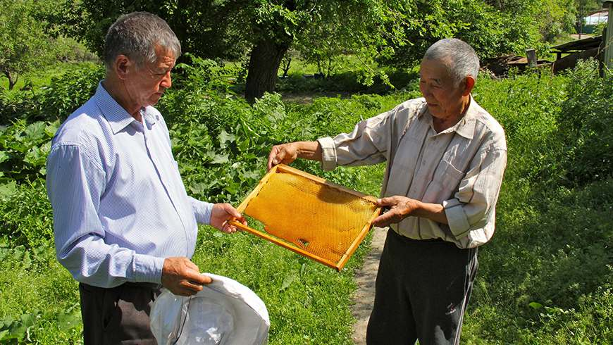 Beekeeping was integrated into seasonal pasture management as part of the Shiyen SGP project. In addition to providing villagers with a secondary source of income, bees pollinate sainfoin and other crops, benefitting the ecosystem at large.